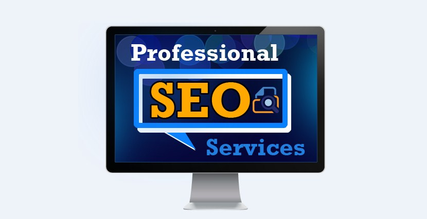 Building Your Website Business With An SEO Professional